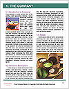 0000091951 Word Templates - Page 3
