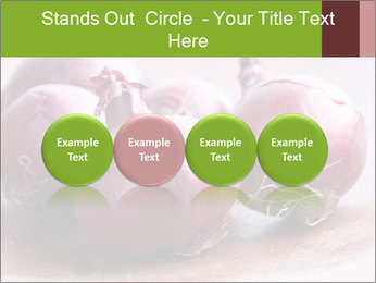 Fresh red onions PowerPoint Templates - Slide 76