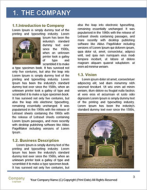 0000091957 Word Template - Page 3