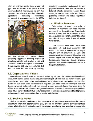 0000091957 Word Template - Page 4