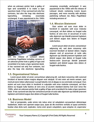 0000091958 Word Template - Page 4