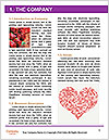 0000091965 Word Template - Page 3