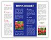 0000091971 Brochure Template