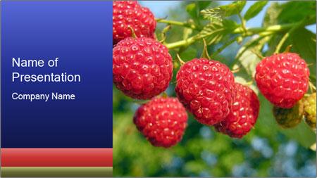 Raspberry PowerPoint Template