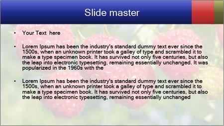 Raspberry PowerPoint Template - Slide 2