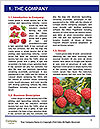 0000091971 Word Templates - Page 3