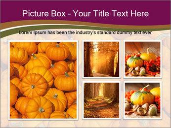 Colorful pumpkins PowerPoint Templates - Slide 19