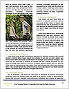 0000091976 Word Templates - Page 4