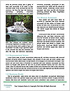 0000091999 Word Template - Page 4