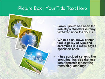 Ecosystem PowerPoint Template - Slide 17