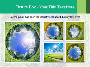 Ecosystem PowerPoint Template - Slide 19