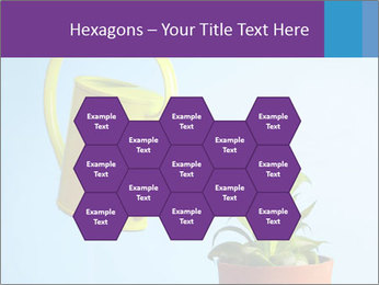 Plant And Wateringpot PowerPoint Templates - Slide 44