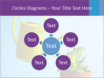 Plant And Wateringpot PowerPoint Templates - Slide 78
