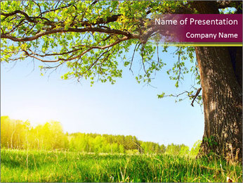Tree View PowerPoint Template