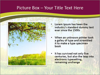 Tree View PowerPoint Template - Slide 13