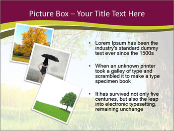 Tree View PowerPoint Template - Slide 17