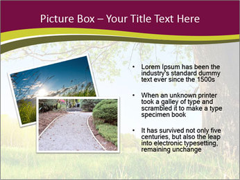 Tree View PowerPoint Template - Slide 20