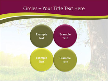Tree View PowerPoint Template - Slide 38