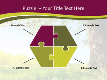 Tree View PowerPoint Template - Slide 40