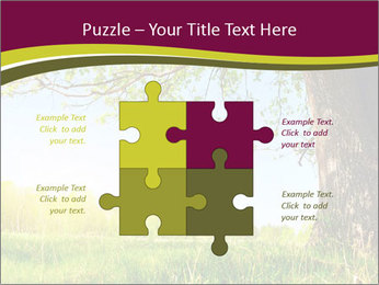Tree View PowerPoint Template - Slide 43
