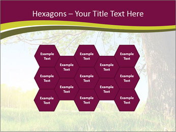 Tree View PowerPoint Template - Slide 44