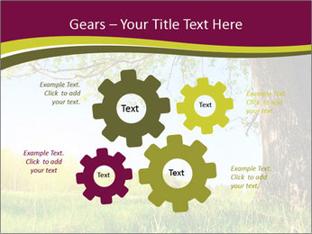 Tree View PowerPoint Template - Slide 47
