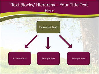 Tree View PowerPoint Template - Slide 69