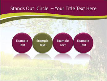 Tree View PowerPoint Template - Slide 76