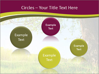 Tree View PowerPoint Template - Slide 77