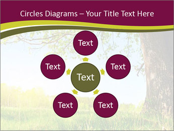 Tree View PowerPoint Template - Slide 78