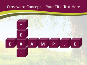 Tree View PowerPoint Template - Slide 82