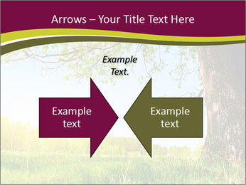 Tree View PowerPoint Template - Slide 90