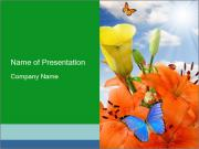 Flowers And Butterfly PowerPoint Templates