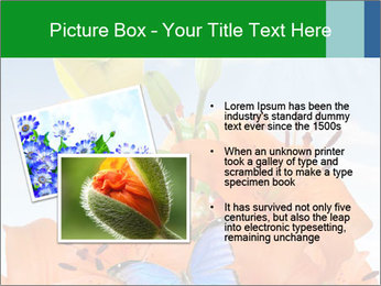 Flowers And Butterfly PowerPoint Templates - Slide 20