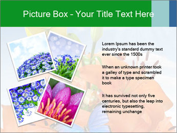 Flowers And Butterfly PowerPoint Templates - Slide 23
