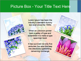Flowers And Butterfly PowerPoint Templates - Slide 24