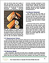 0000092018 Word Template - Page 4