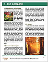 0000092026 Word Template - Page 3