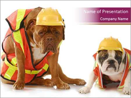 Working dogs PowerPoint Template