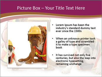 0000092027 PowerPoint Template - Slide 13