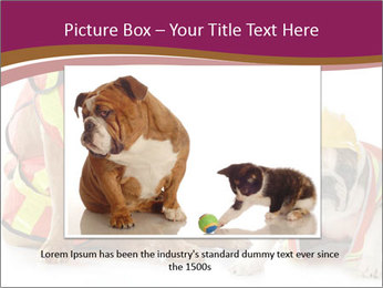 0000092027 PowerPoint Template - Slide 16