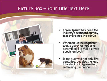 0000092027 PowerPoint Template - Slide 20