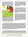 0000092031 Word Template - Page 4