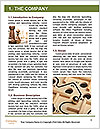 0000092033 Word Templates - Page 3