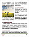 0000092035 Word Templates - Page 4