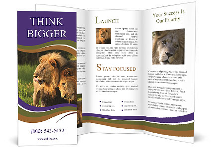 0000092036 Brochure Template