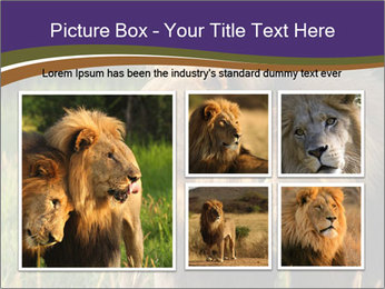 Brothers PowerPoint Template - Slide 19