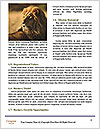 0000092036 Word Templates - Page 4