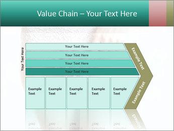 0000092042 PowerPoint Template - Slide 27