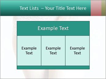 0000092042 PowerPoint Template - Slide 59
